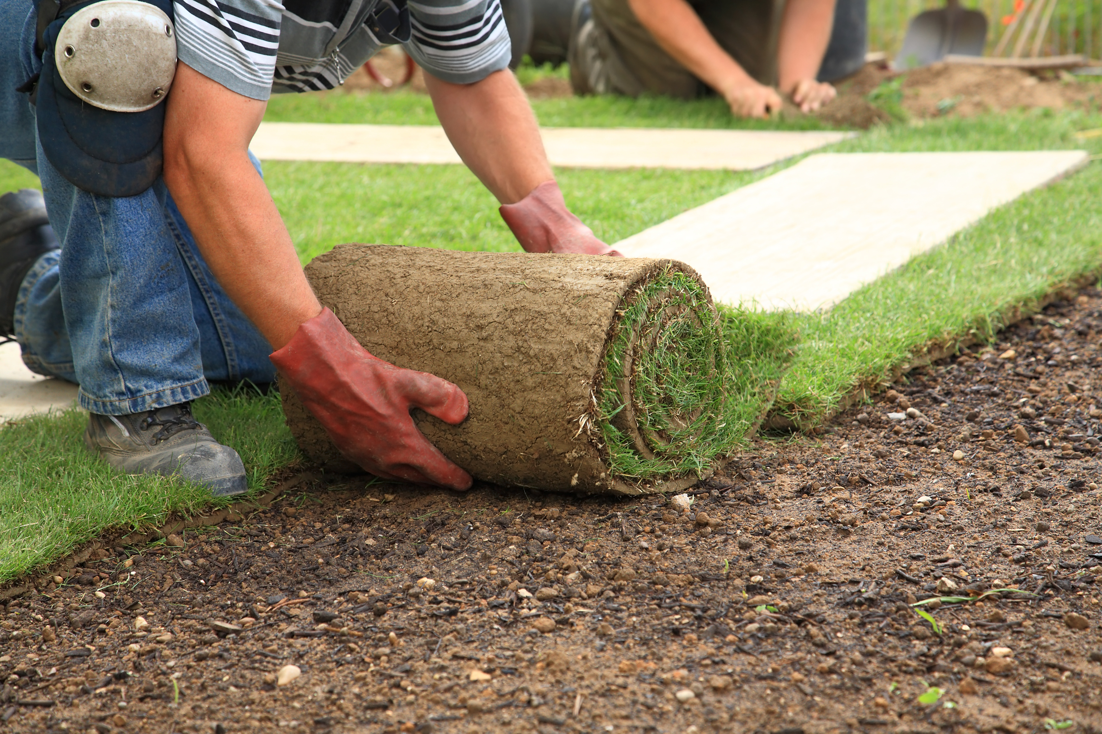 Elegant How to Start A Landscaping Business